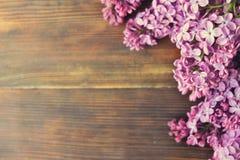 De tedere minimalistic lente bloeit samenstelling op textuuroppervlakte Mooie vrouwelijke installatiedecoratie voor de kaart van  Stock Foto's