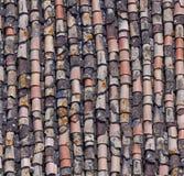 De tegel van het dak Stock Afbeeldingen
