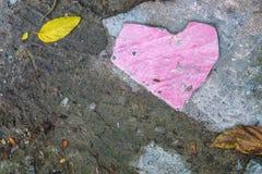 De tegel van de landhuisvloer is gebroken op de verlaten weg als roze hij Royalty-vrije Stock Fotografie