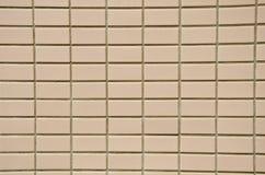 De tegels van de muur. royalty-vrije stock afbeeldingen