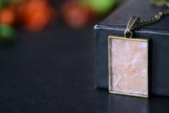 De tegenhanger van het esdoornblad op een donkere achtergrond Stock Foto's