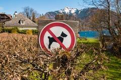 De tekenhonden worden niet toegestaan dichtbij de ingang aan het strand van bergmeer stock fotografie