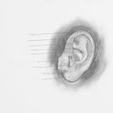 De tekening van het oorpotlood royalty-vrije stock foto's