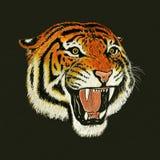 De tekening van het tijgergebrul Stock Afbeeldingen