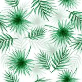 De tekening van de palmbladenhand royalty-vrije illustratie