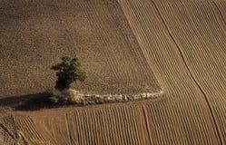 De tekeningen van de landbouwer stock foto