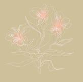 De tekeningsalstrameriya van de borstel Royalty-vrije Stock Afbeeldingen