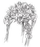 De tekeningsbloem van de hand Royalty-vrije Stock Afbeeldingen