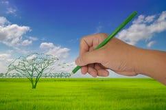 De tekeningsboom van de hand Stock Foto