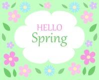 De tekst hello lente van de lente de bloemenbacground op wit en groen verstand Stock Afbeeldingen