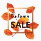 De tekst vectorbanner van de de herfstverkoop met kleurrijke seizoengebonden dalingsbladeren Vector illustratie Stock Foto