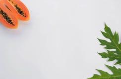 De tekstkader van het papajablad voor uw tekst Stock Afbeelding
