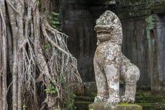 De tempel Siem van Preahkahn oogst, Angkor Wat, Kambodja Stock Foto's