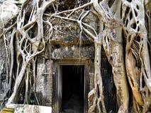 De Tempel van Angkor Stock Foto's