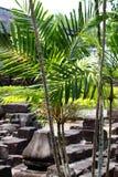 De Tempel van Borobudur, Yogyakarta, Java, Indonesië Royalty-vrije Stock Foto