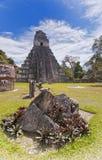 De Tempel van de jaguar Stock Fotografie