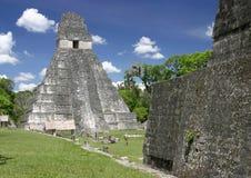 De tempel van de jaguar, Tikal Stock Fotografie