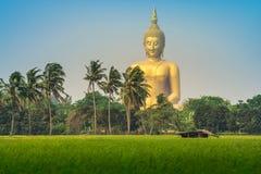 De Tempel van de leren riemthailand van Wat muang ANG Stock Foto