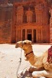 De tempel van de schatkist bij Petra Stock Foto