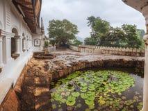 De Tempel van het Hol van Dambulla, Sri Lanka Royalty-vrije Stock Fotografie
