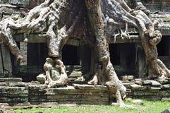 De tempel van Kambodja Angkor Preah Khan royalty-vrije stock fotografie