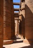 De tempel van Karnak in Luxor, Egypte Royalty-vrije Stock Foto's