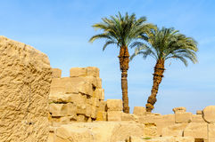 De tempel van Karnak in Luxor, Egypte. royalty-vrije stock foto's