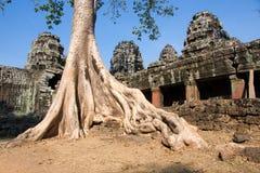 De Tempel van Khan van Preah, Kambodja. Royalty-vrije Stock Foto's