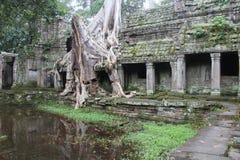 De tempel van Khan van Preah kambodja Siem oogst Provincie Siem oogst stad Stock Afbeelding