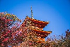 De Tempel van kiyomizu-Dera royalty-vrije stock foto's