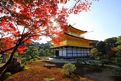 De Tempel van Kyoto, Japan Kinkaku -kinkaku-ji in de herfst Royalty-vrije Stock Foto