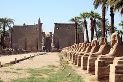 De Tempel van Luxor Stock Afbeeldingen