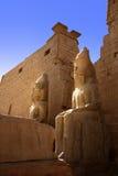 De tempel van Luxor in Egypte Stock Foto's