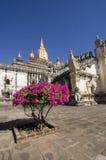 De tempel van Paya van Ananda, Bagan, Birma Royalty-vrije Stock Foto's