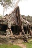 De tempel van Preahkhan in Angkor in Siem oogst Stock Afbeelding