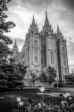De Tempel van Salt Lake City Stock Foto