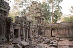 De tempel van Ta Prohm Royalty-vrije Stock Foto's