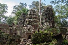 De Tempel van Ta Prohm, Anghor Stock Foto