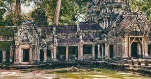 De tempel van Ta Prohm in Angkor Wat Kambodja Stock Fotografie