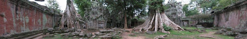 De tempel van Ta Prohm, Kambodja royalty-vrije stock afbeeldingen