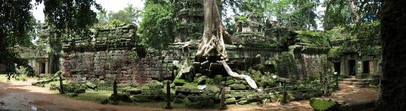 De tempel van Ta Prohm, Kambodja royalty-vrije stock afbeelding