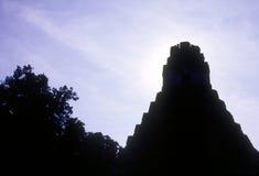 De tempel van Tikal royalty-vrije stock foto's