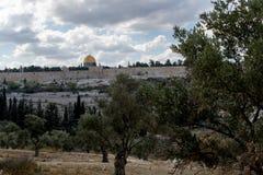 De tempel zet en de graven van Orson Hyde Park in Jeruzalem op stock afbeeldingen