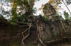 De tempelingang van Ta Prohm Royalty-vrije Stock Foto