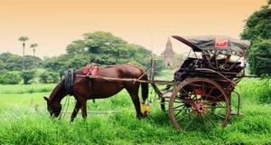 De tempels en het paardvervoer in Bagan stock afbeeldingen