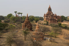 De Tempels van Bagan Pagan, Mandalay, Myanmar, Birma royalty-vrije stock fotografie