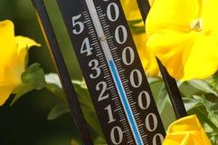 De temperaturen van de zomer Stock Foto