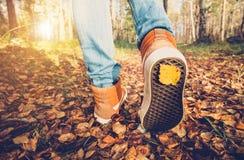 De tennisschoenen die van vrouwenvoeten op dalingsbladeren lopen Openlucht Stock Afbeeldingen