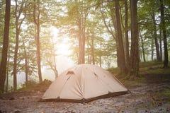 De tent is in het bos Royalty-vrije Stock Afbeelding