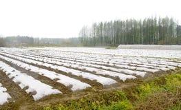 De tent van het landbouwbedrijf Royalty-vrije Stock Foto